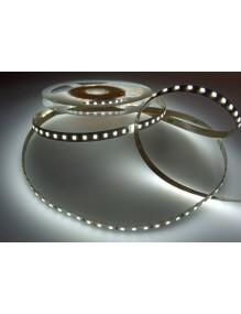 Tiras Led 24V Tira LED 2835 24V 120/M 6K 55-LED2835-120-IP20-6K-24V