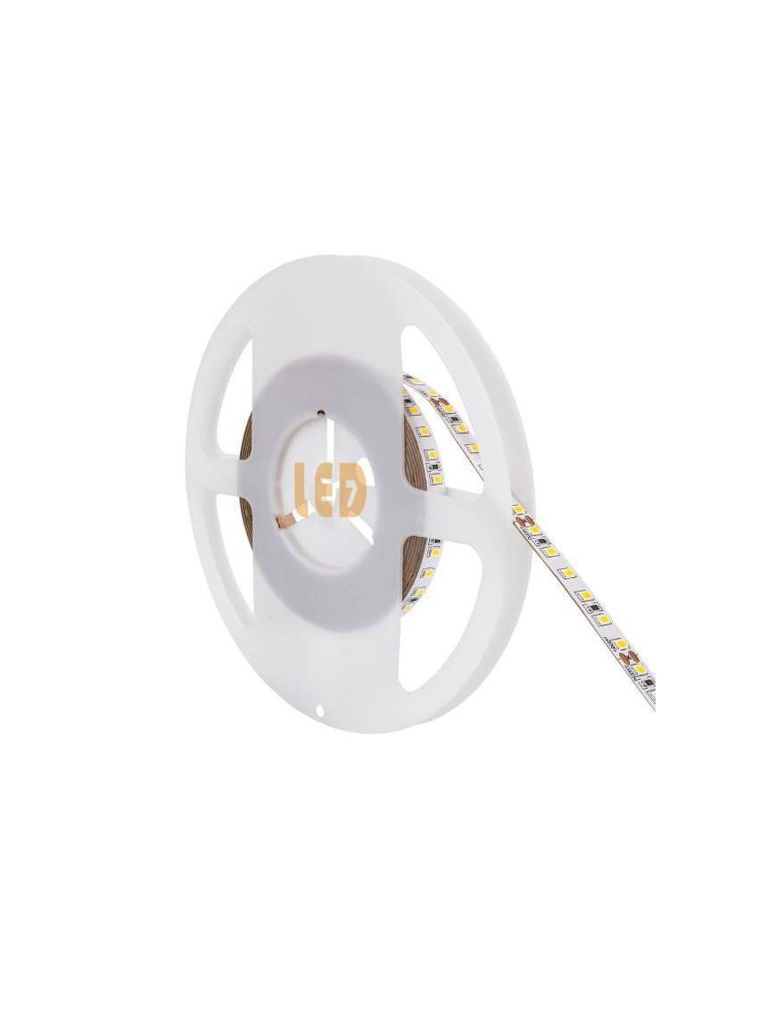 Tira LED 2835 24V 12w/m 6K