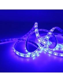 Tira LED 12V 5m IP65 Azul