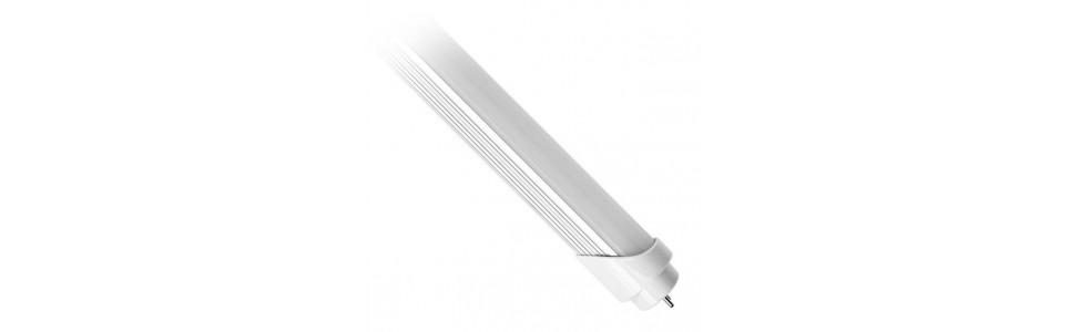 Tubos LED sustitutos de los fluorescentes