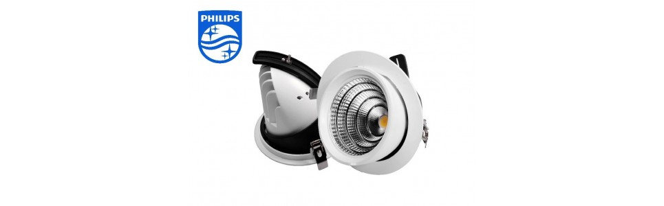downlight-basculante